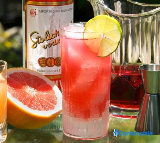 5 Best Low Calorie Alcoholic Drinks For New Year's
