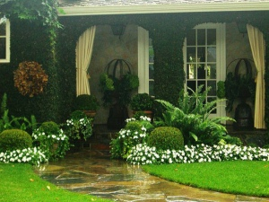 How To Protect Your Garden When Working On Your House