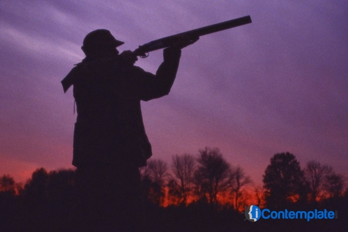 Basic Hunting Safety