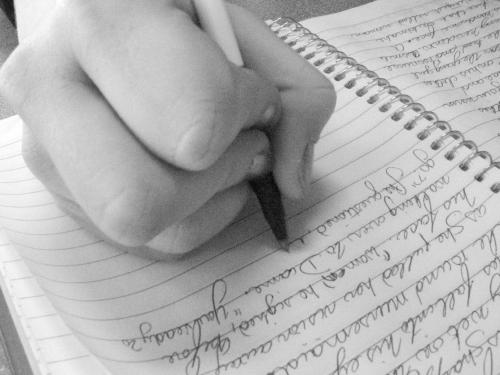 How To Get The Best Essays?