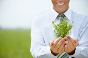 Why You Should Start A Green Business