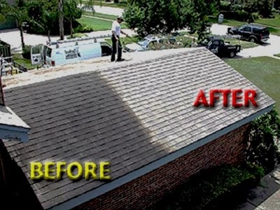 How To Remove Algae From Your Roof