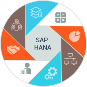 SAP HANA Implementation Who Is It For and When Is It Required