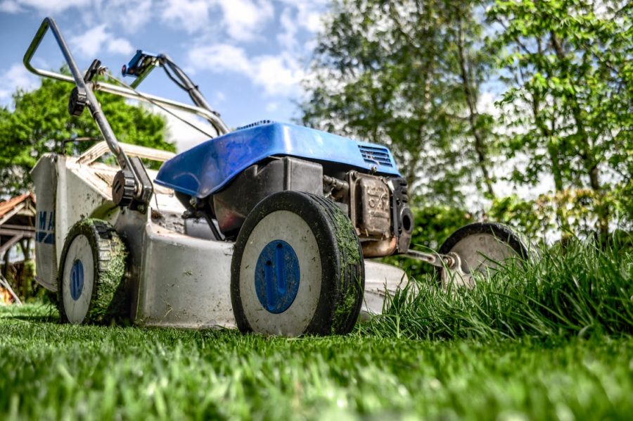 Bought A House With A Big Yard? Top Steps For Taking Care Of All That Grass