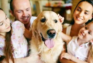 Pet Caring: 8 Reasons To Neuter Your Dog