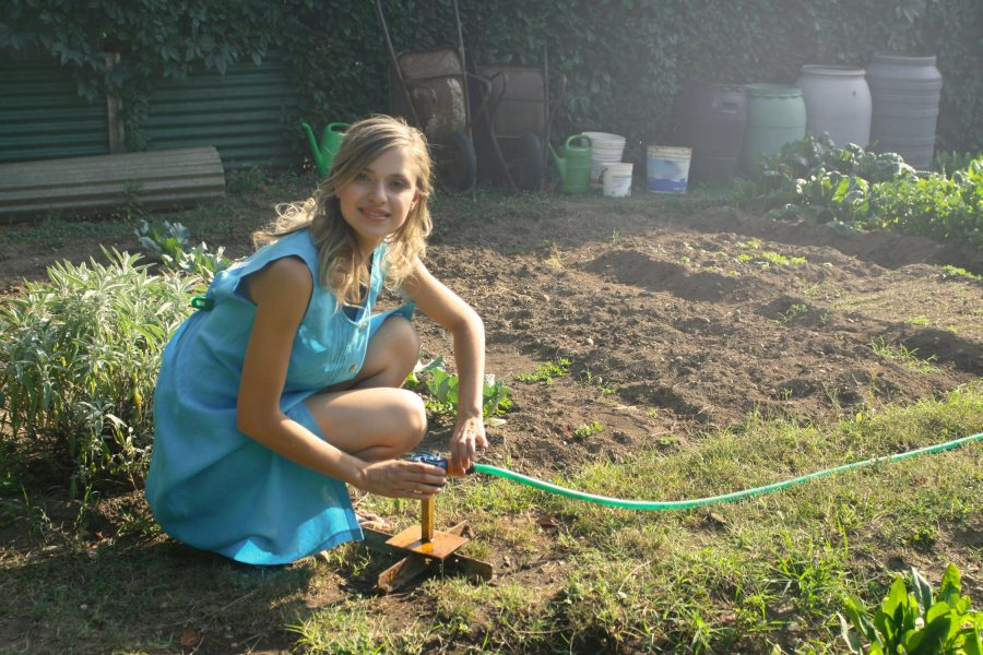 5 Ways To Clean and Dejunk Your Yard For Summertime