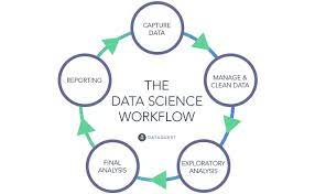 Wondering What Do Data Scientists Do? Here Is The Answer