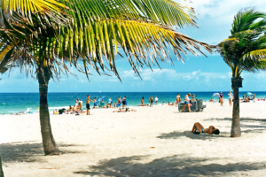 TOP 5 Beautiful Beaches In Fort Lauderdale & Beyond