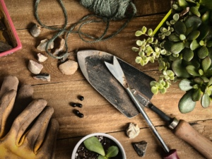 No-Dig Gardening For Beginners